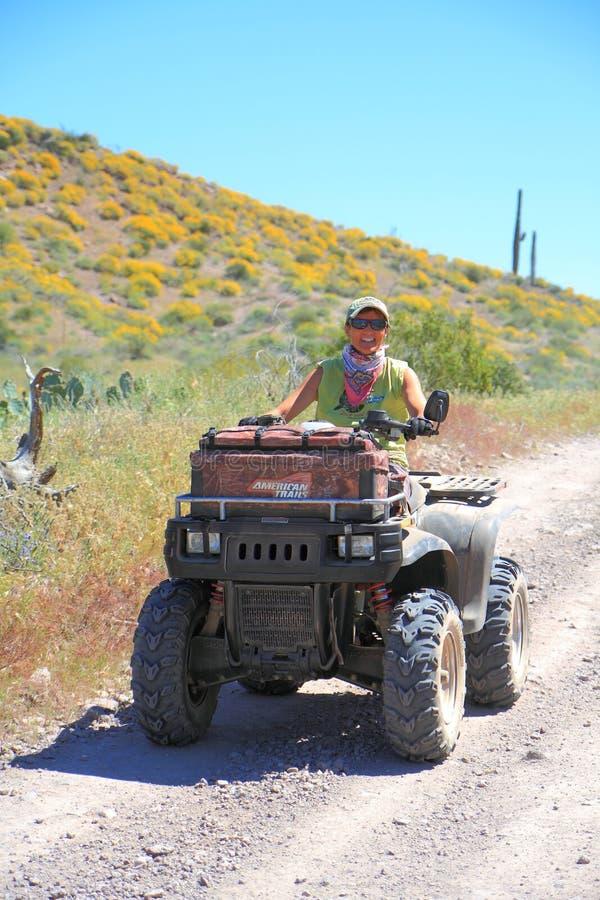Voiture à quatre roues : Tour de désert de ressort photos libres de droits