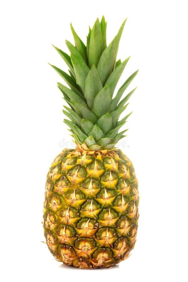 Grand ananas mûr frais de fruit sur un fond d'isolement blanc Fruit, ?t? photographie stock libre de droits