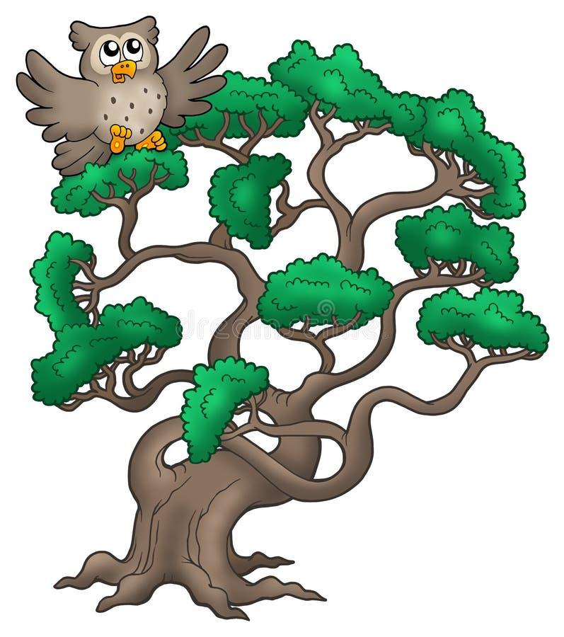 Grand arbre de pin avec le hibou de dessin animé illustration libre de droits