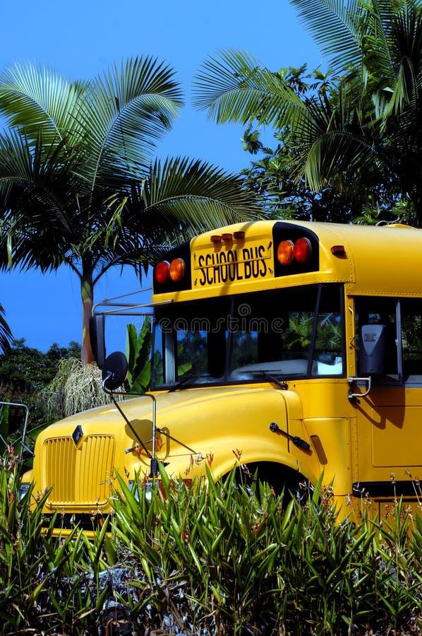 Grand autobus scolaire d'île images stock