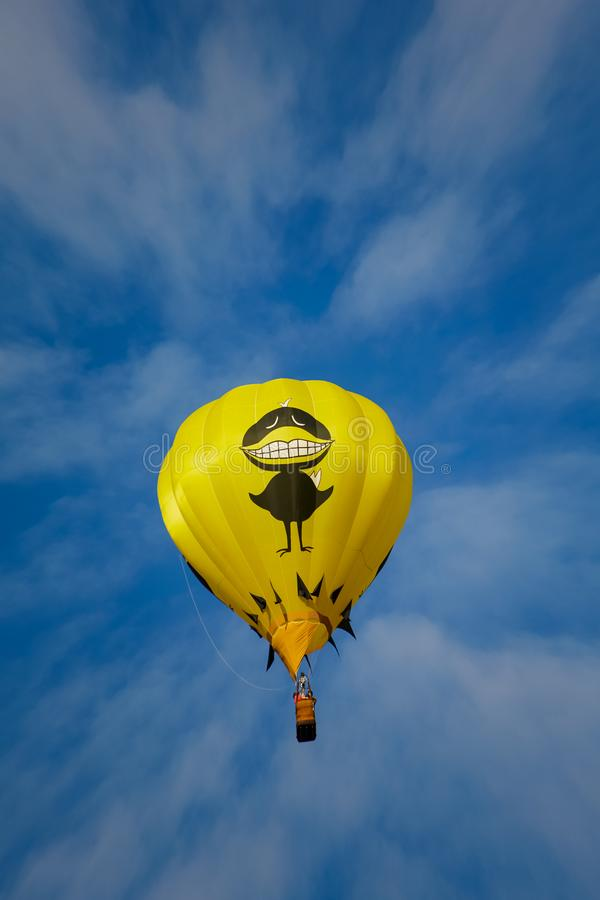 Grand ballon noir d'oiseau photo libre de droits