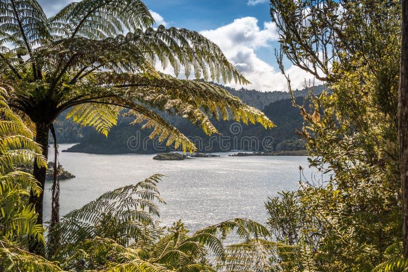 Grand barrage de réservoir d'eau au Nouvelle-Zélande images stock