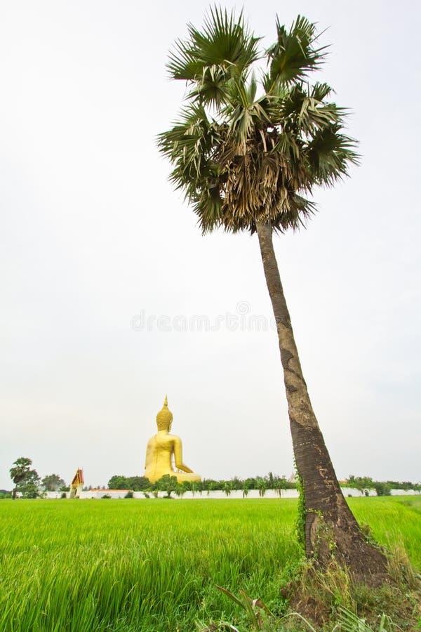 Grand Bouddha chez Wat Mung, Thaïlande photos stock
