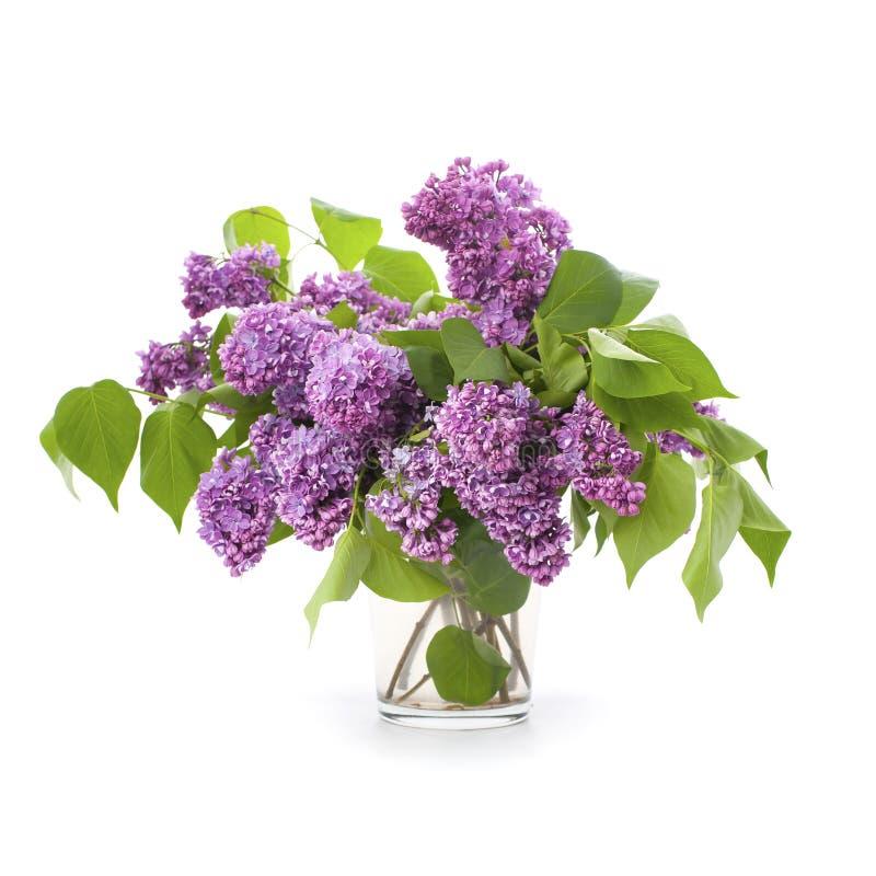 Grand bouquet des lilas dans un vase en verre image libre de droits