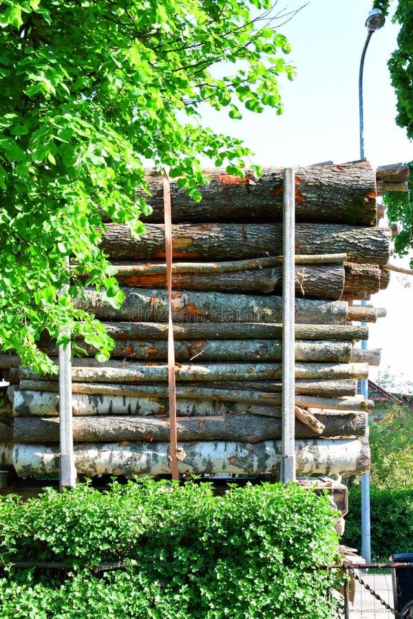 Grand camion de transport de bois de construction image libre de droits