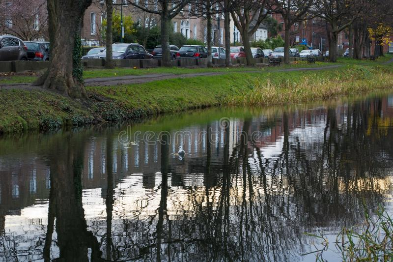 Grand Canal in Dublin Ireland during winter, with reflections on water. Grand Canal in Dublin Ireland during winter, with reflections of sky and trees on the stock photography