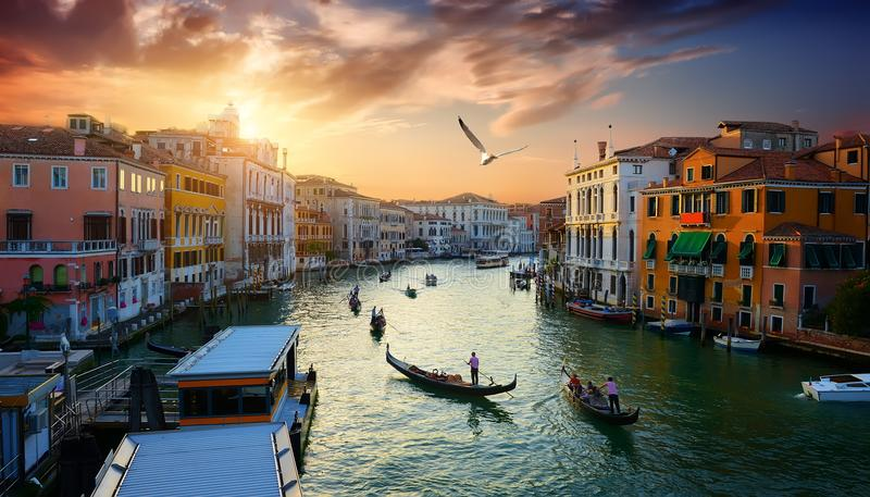Venice at the sunset. Grand Canal in Venice at the sunset, Italy royalty free stock photo