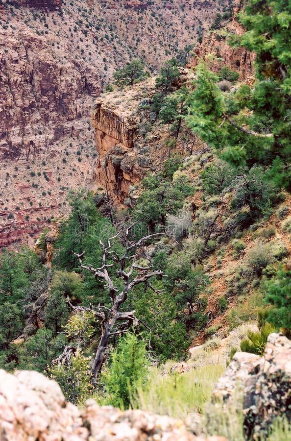 Grand Canyon_11 Free Stock Photos