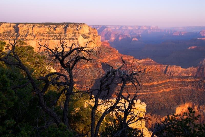Grand Canyon Royalty Free Stock Photos