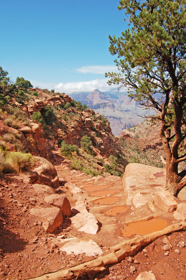 Download The Grand Canyon Stock Image - Image: 24796001