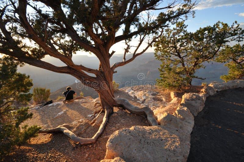 Download Grand Canyon arkivfoto. Bild av liggande, aristocratically - 27282736