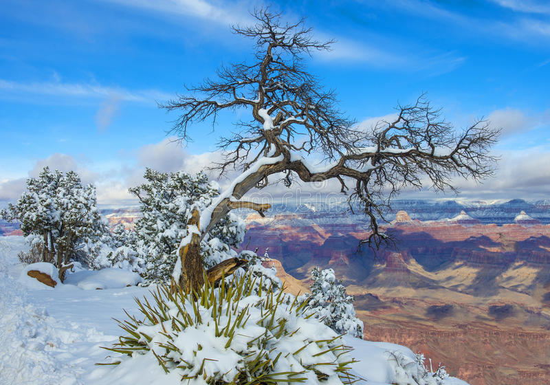 Download Grand Canyon Stock Photography - Image: 28759932