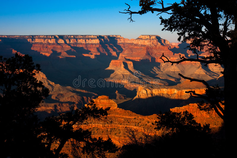 Grand Canyon. Beautiful red colors of the Grand Canyon at sundown stock photo