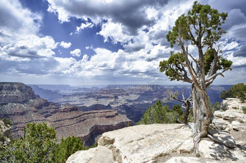 Grand canyon, arizona stock photo