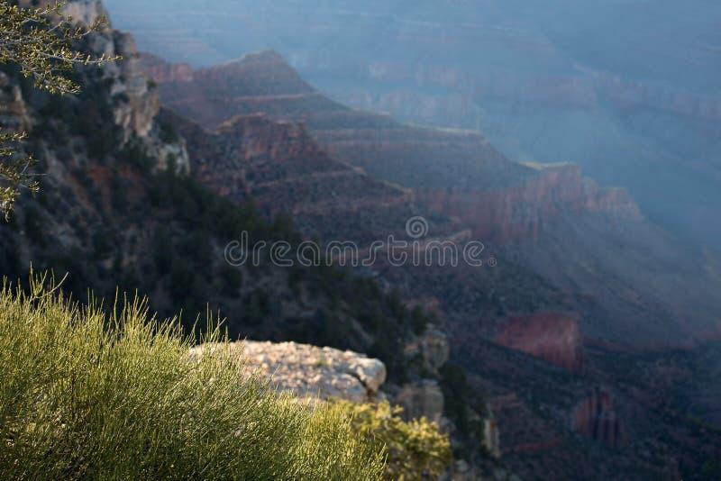 Grand Canyon, Arizona stockfoto