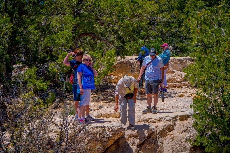 Grand Canyon Arizona USA, JUNI, 14, 2018: Oidentifierat folk som fotvandrar och går på södra kantslinga av Grand Canyon arkivbild
