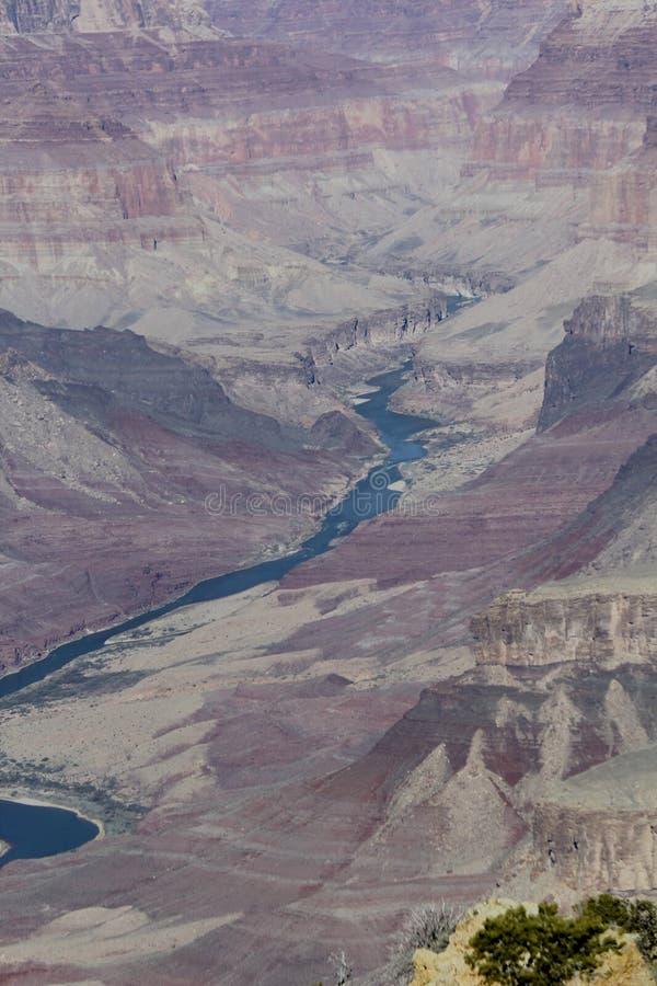 Grand Canyon Coloradofloden arkivbilder