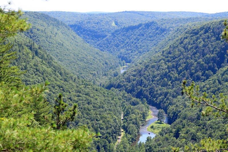 Grand Canyon de la Pennsylvanie photos stock