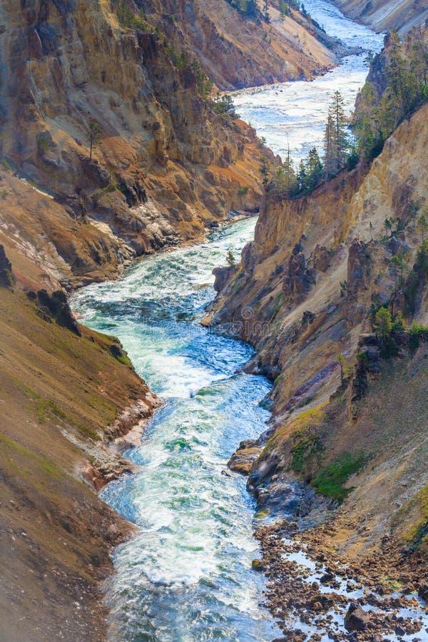Grand Canyon del parque nacional de Yellowstone imagenes de archivo