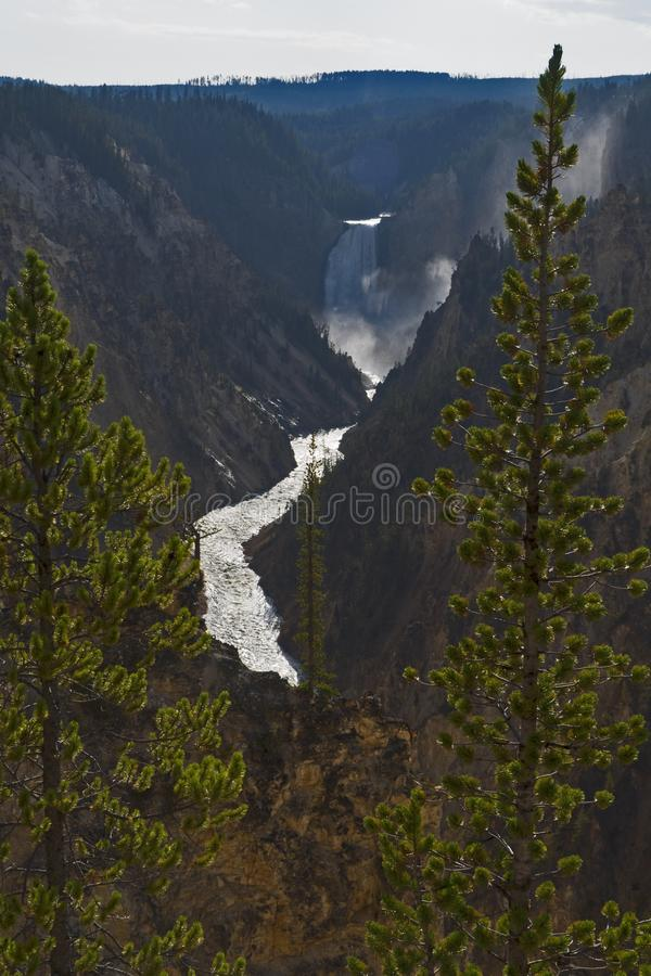 Grand Canyon des Yellowstone, Wyoming USA lizenzfreie stockfotos