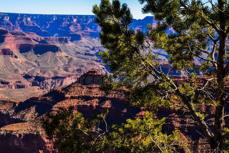 Grand Canyon ` die s Zuivere Afnames overweldigen royalty-vrije stock afbeelding