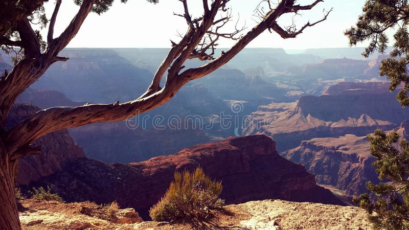 Grand Canyon ma vue images stock