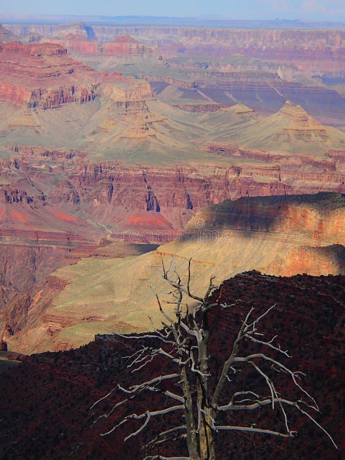 Grand Canyon minha opinião fotografia de stock royalty free