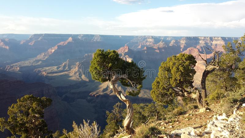 Grand Canyon minha opinião imagem de stock royalty free