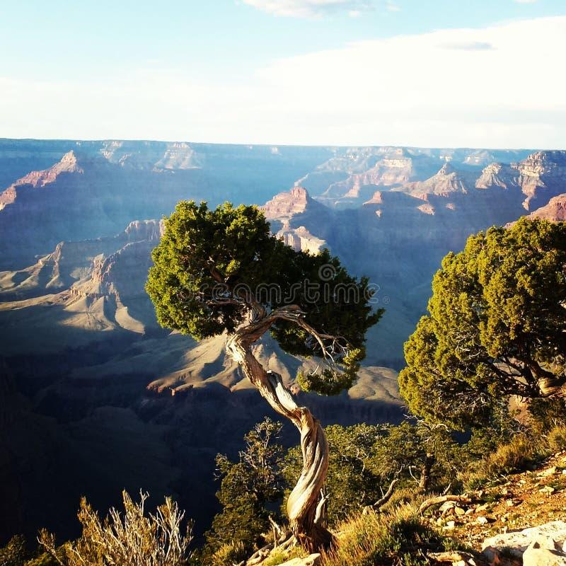Grand Canyon minha opinião imagens de stock royalty free