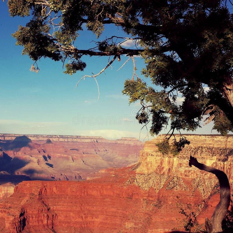 Grand Canyon minha opinião imagens de stock