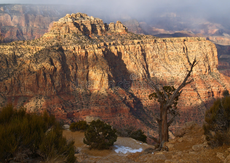 Grand Canyon National Park. In the morning stock image
