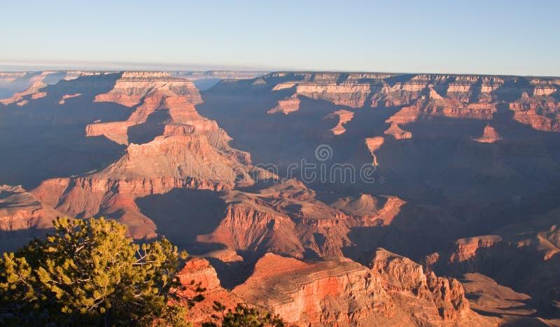 Grand Canyon nationalpark på gryning royaltyfri bild