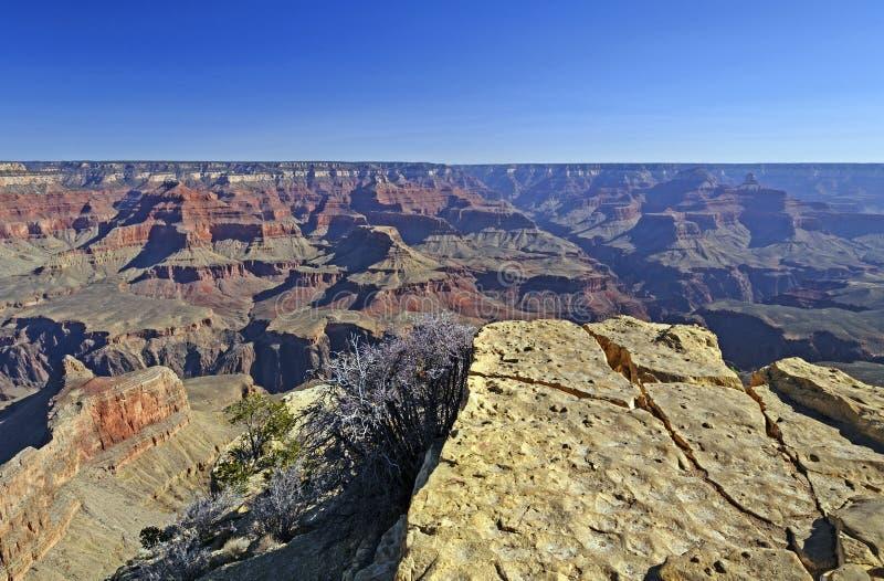 Grand Canyon -Panorama lizenzfreies stockfoto