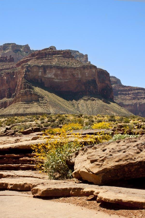 Download Grand Canyon Royalty Free Stock Photo - Image: 30952675