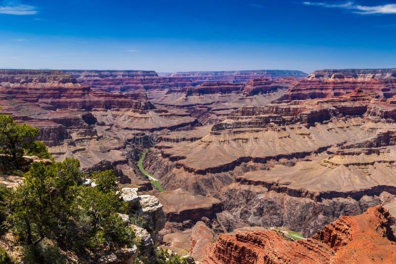 Grand Canyon sikt från södra kant; Coloradofloden är synlig under arkivbild