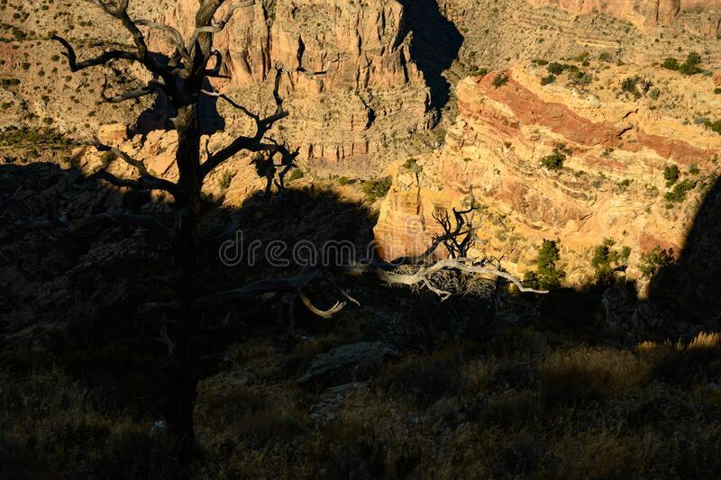 Grand Canyon sunrise with beautiful colours. In USA royalty free stock images