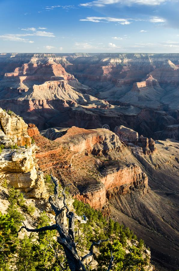 Grand Canyon at sunrise stock image