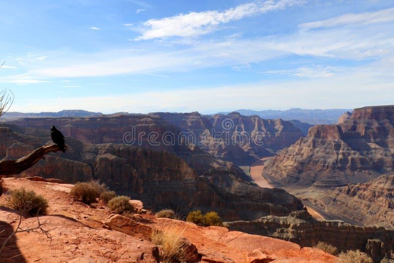 Grand Canyon, tallado por el río Colorado en Arizona, Estados Unidos foto de archivo libre de regalías