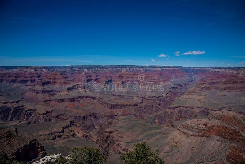 Grand canyon usa stock images