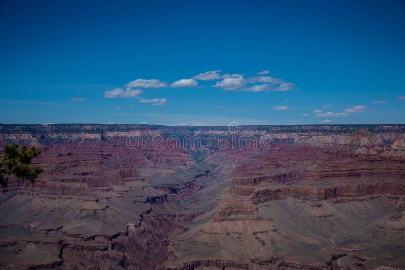 Grand canyon usa royalty free stock photos