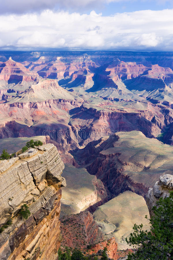 Grand Canyon vertikal sikt royaltyfria bilder