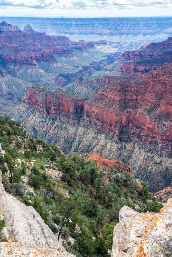 Grand Canyon vertikal sikt royaltyfri bild