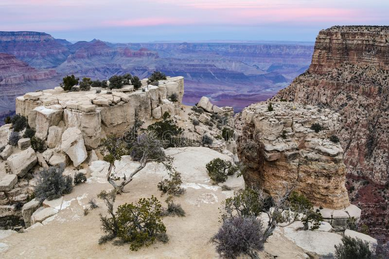 Grand Canyon, view from Moran Point. Rocks and trees in foreground; canyon with pink sky behind. stock image