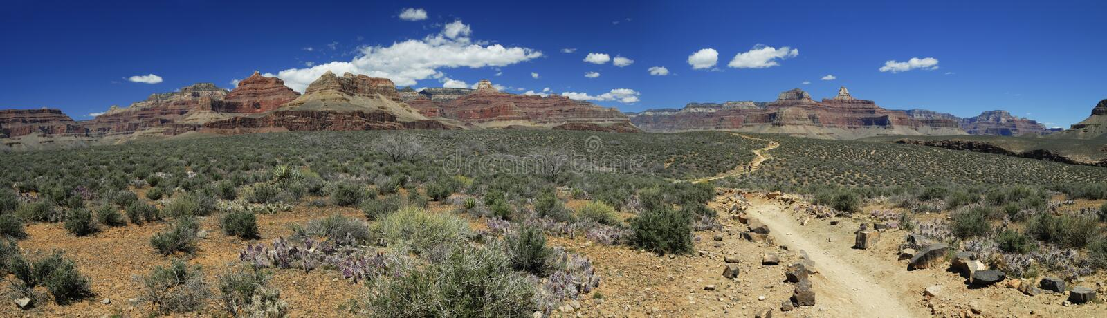 Download Grand Canyon Vista From Plateau Point Trail Stock Photo - Image: 9110700
