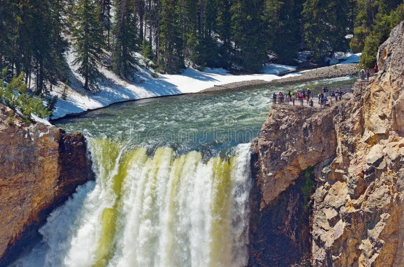 Grand Canyon von Yellowstone Nationalpark, USA lizenzfreie stockfotografie