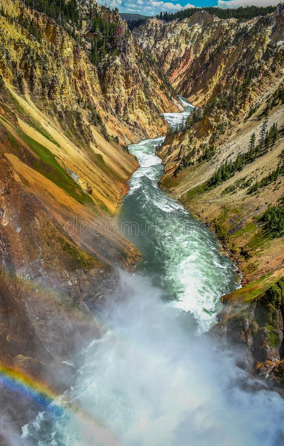 Grand Canyon von Yellowstone-Regenbogen lizenzfreie stockfotos