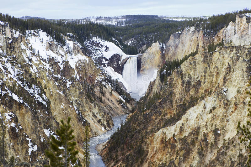 Grand Canyon of Yellowstone stock images