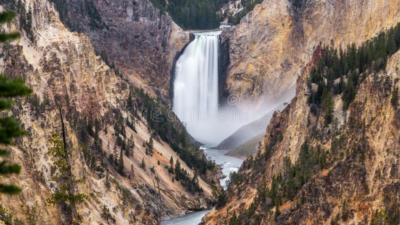 Grand canyon of yellowstone the most beautiful in  Yellowstone national park , Wyoming , United States of America stock images