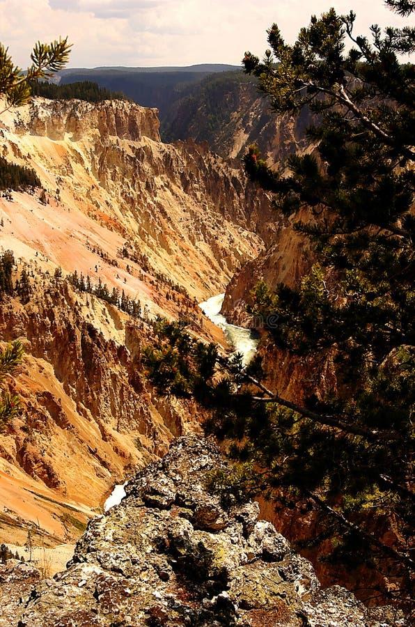 Grand Canyon, Yellowstone Nationalpark, Wyoming, USA stockfotos