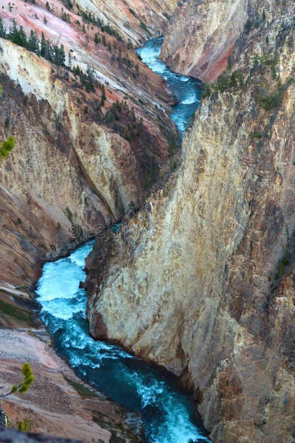 Grand Canyon of the Yellowstone, Wyoming, USA royalty free stock images